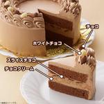 キャラデコお祝いケーキ きかんしゃトーマス(チョコクリーム)[5号サイズ]【2019年12月発送・クリスマス予約】_4
