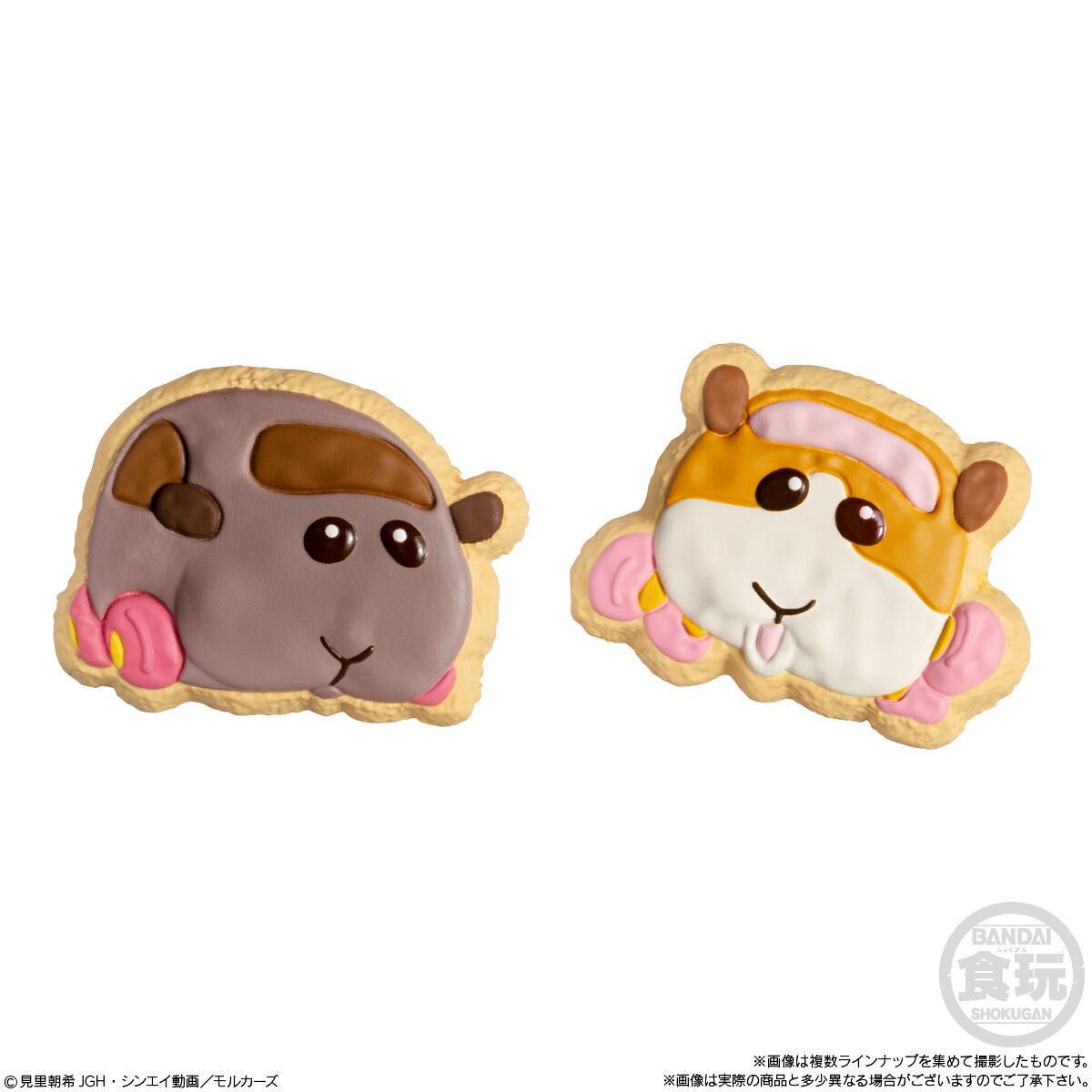PUI PUI モルカー COOKIE MAGCOT_4