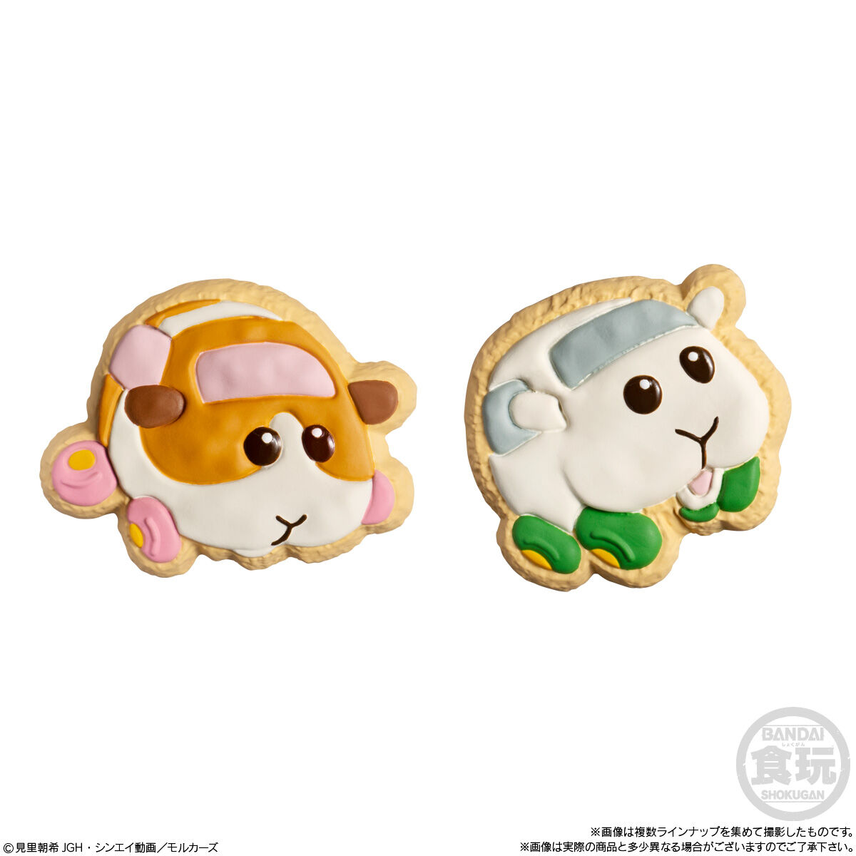 PUI PUI モルカー COOKIE MAGCOT_2