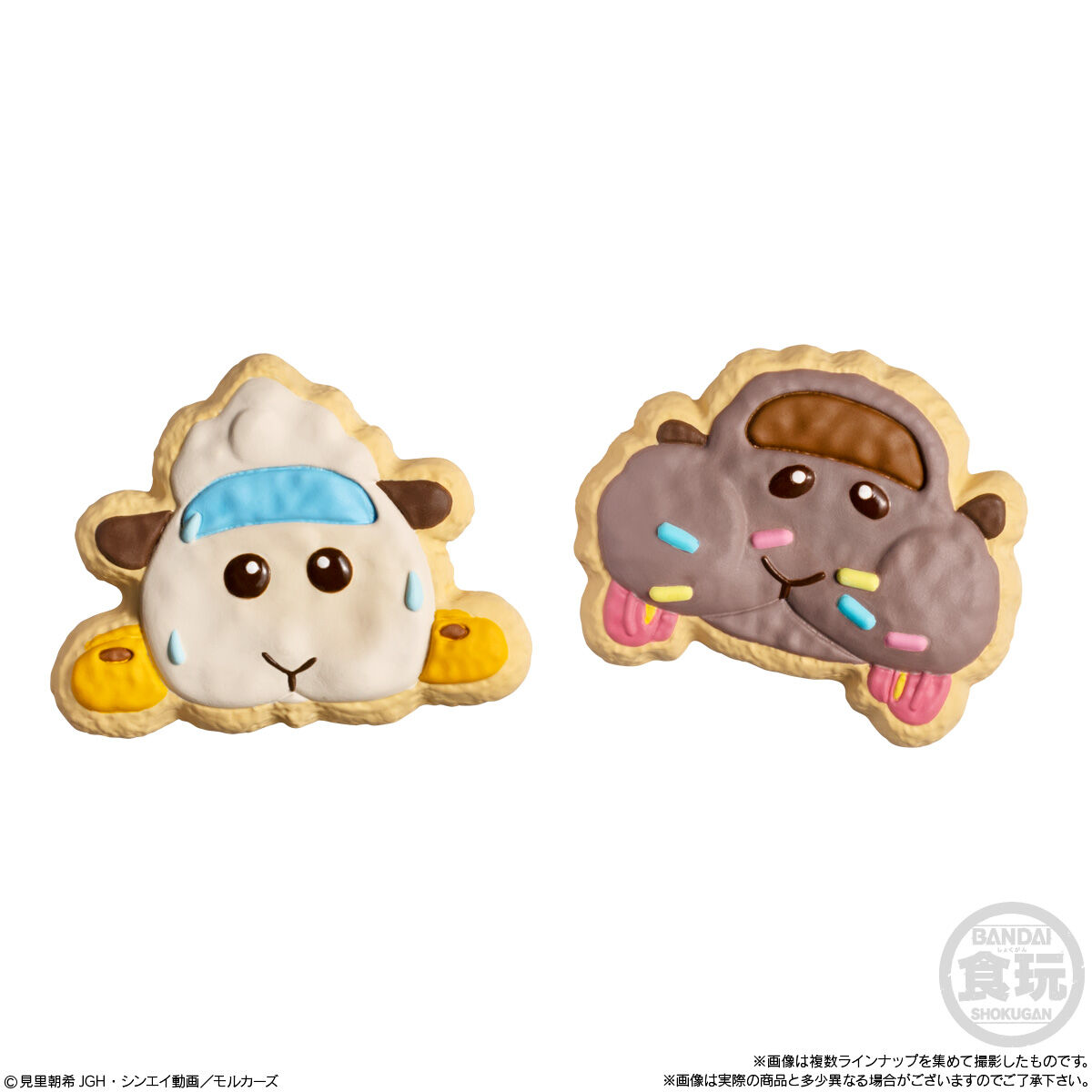 PUI PUI モルカー COOKIE MAGCOT_6