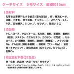 【特典あり】キャラデコクリスマス 騎士竜戦隊リュウソウジャー[5号サイズ]_6